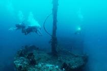 菲律宾PG岛海豚湾 PADI开放水域潜水ow课程(PADI官方认证)