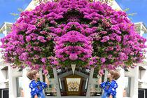 自由时光泰国华欣圣托里尼小希腊主题公园+梦幻水世界门票