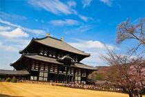 日本自由行 京都-奈良10小时包车往返 无购物 5座/7座/10座可选