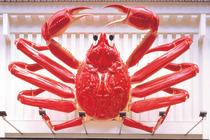 蟹道乐(东京新宿站前店、大阪梅田店、京都本店、涩谷公园通店)大螃蟹美食