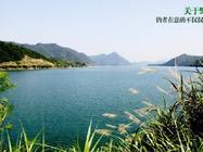 错峰出游自选千岛湖啤酒假日酒店,杭州千岛湖森林氧吧/千岛湖绿道等