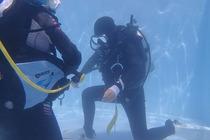 塞班潜水PADI考证-救援潜水员课