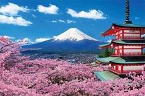 东京富士山5天4晚半自助寻味之旅 忍野八海/河口湖/上野公园/秋叶原动漫街
