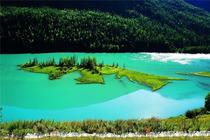 新疆旅游:(包团定制)新鲜北疆:可可托海、喀纳斯、禾木村、赛湖、那拉提7日游