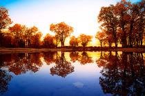 一路向西赏秋色C线-青海湖/茶卡/可可西里/水上雅丹敦煌/胡杨林/祁连山秋景