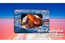 澳洲西澳9天孤独浪漫自驾游少女粉红湖+澳龙虾小镇+观摩海豚群