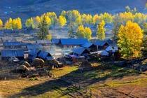 北疆大环线13日 白哈巴—喀纳斯—八音布鲁克—天山天池—禾木—赛里木湖