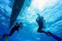 菲律宾 长滩岛PADI无证体验水肺潜水DSD课程1天1潜(PADI官方认证)