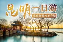 668元游云南:石林、九乡一价全包豪华纯玩一日游 含电瓶车+赠鲜花饼+矿泉水