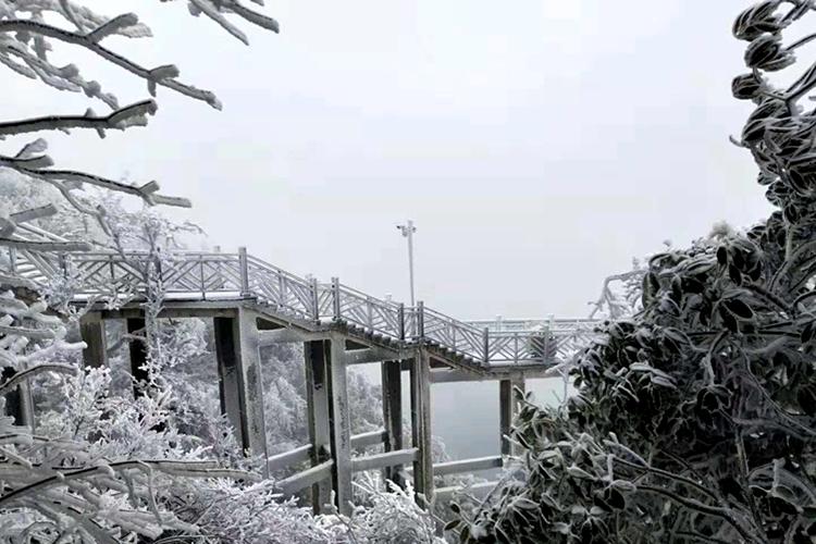 全景钜惠|张家界国家森林公园+大峡谷玻璃桥+天门山玻璃栈道3日游丨赠魅力湘西